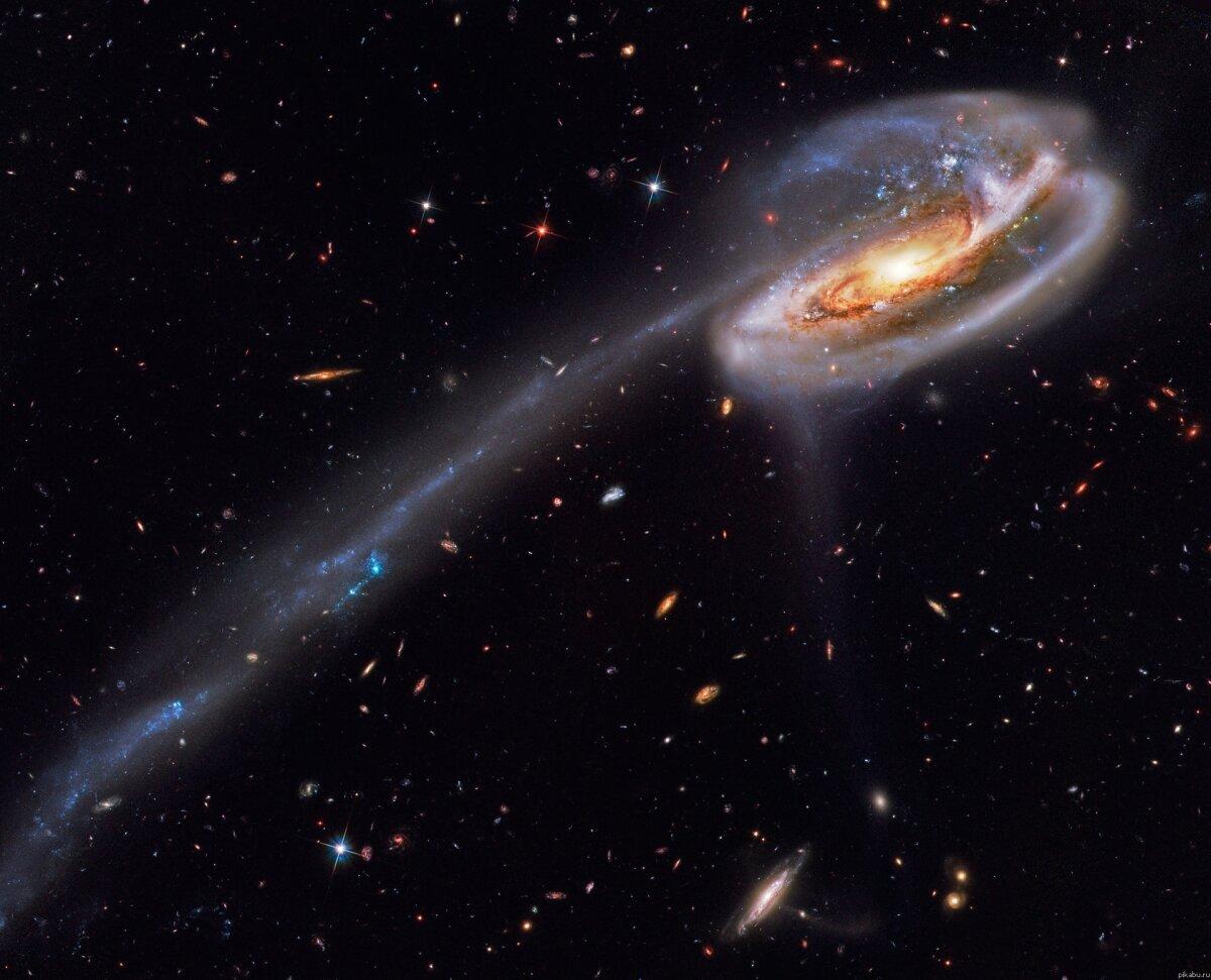 Рефераты по астрономии вселенная галактика звезды астероиды курс пептиды инсулин