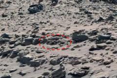 Марс инопланетянин